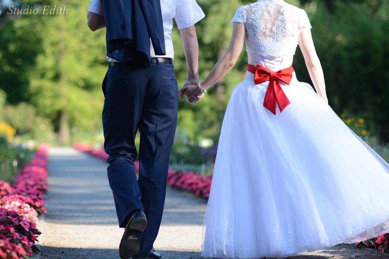 zdjęcia ślubne w ogrodzie botanicznym kraków